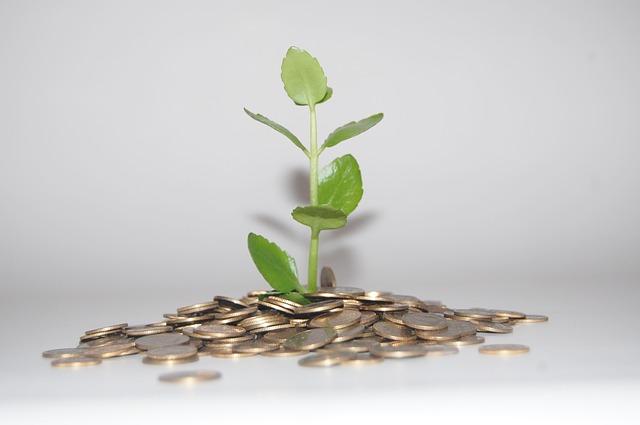 Štístko půjčka - recenze, diskuze a zkušenosti