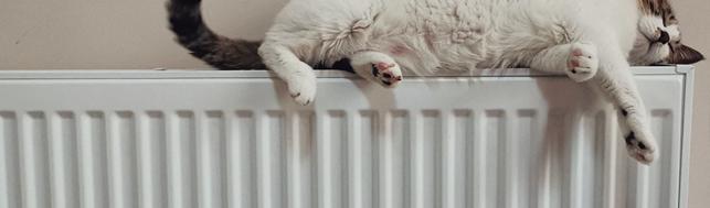 3 tipy, jak začít šetřit na vytápění