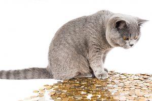 Podívejte se na nebankovní půjčku jinak